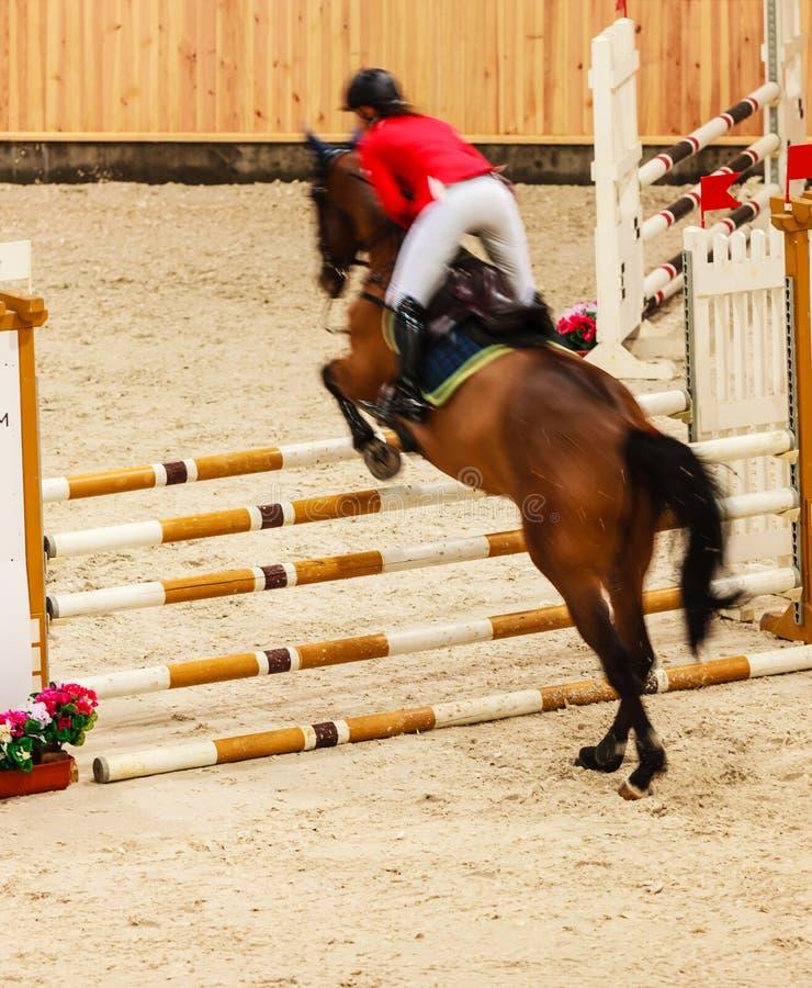 equitation visa banhoppningen, hästen och ryttaren över hopp royaltyfri foto