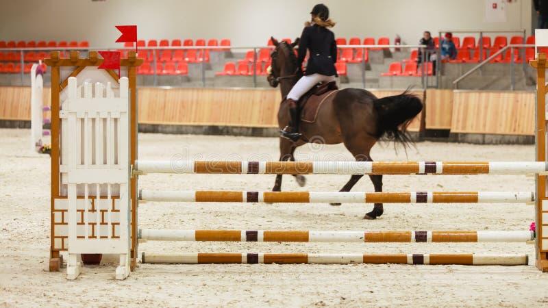 equitation visa banhoppningen, hästen och ryttaren över hopp arkivbilder