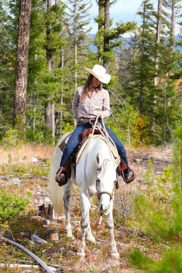 Equitazione fotografia stock