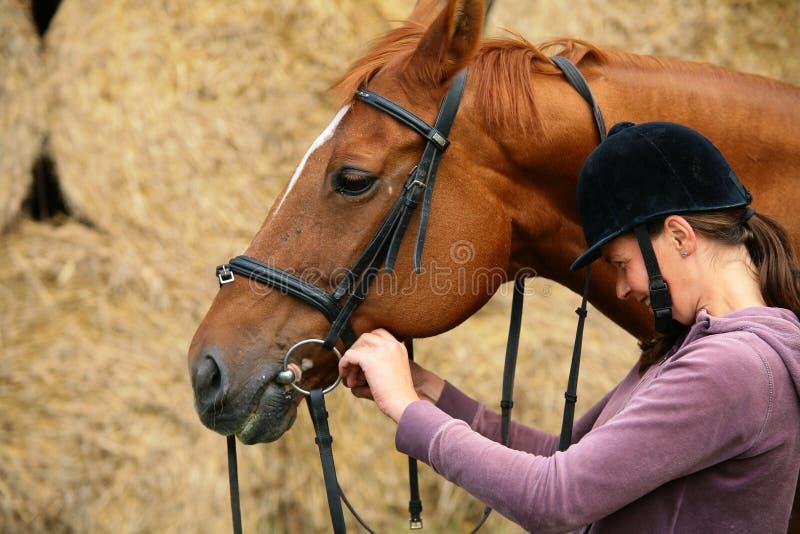 Equitazione fotografie stock