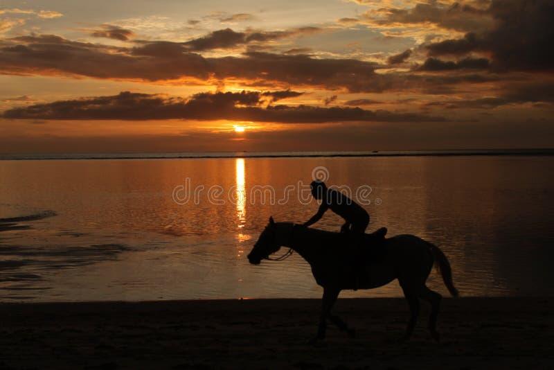 Equitazione al tramonto fotografia stock libera da diritti