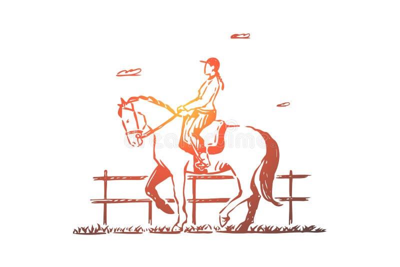 Equitazione femminile della puleggia tenditrice, giovane donna in sella, ricreazione della campagna, addestramento per la concorr royalty illustrazione gratis