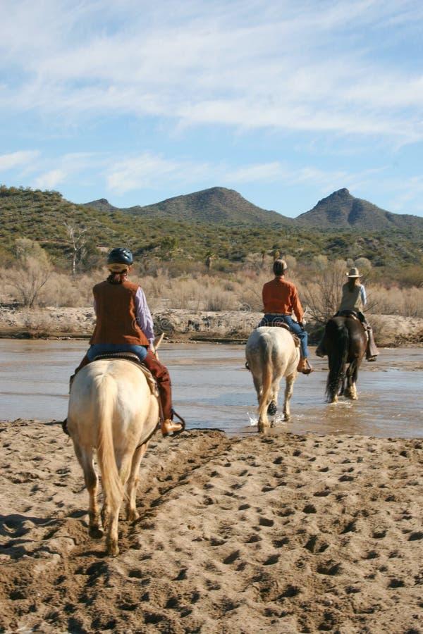 Equitazione nel deserto fotografia stock
