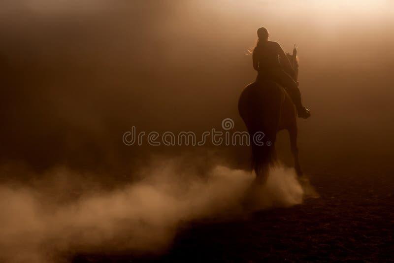 Equitazione nella polvere immagini stock