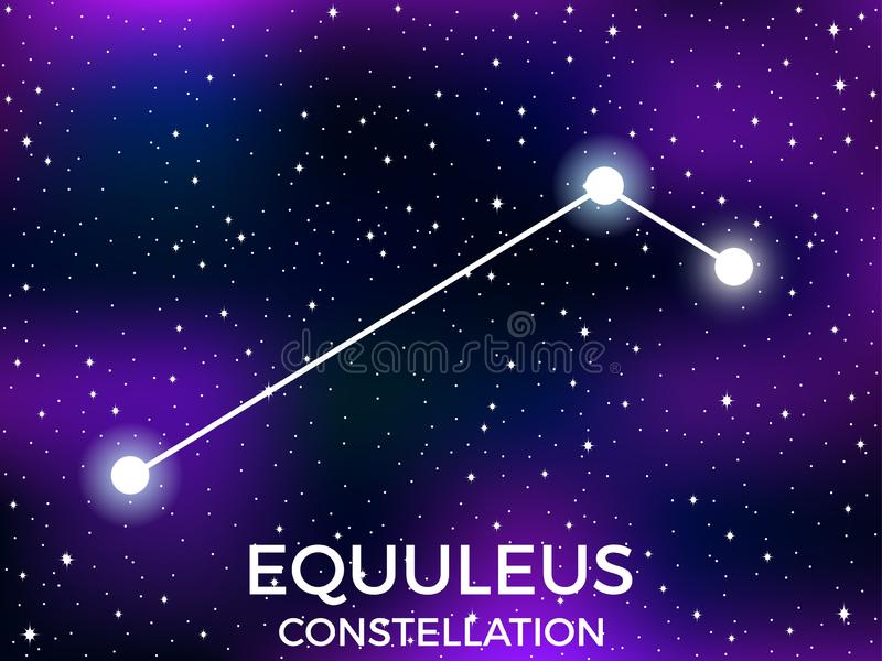 Equuleus constellation. Starry night sky. Cluster of stars and galaxies. Deep space. Vector. Illustration vector illustration