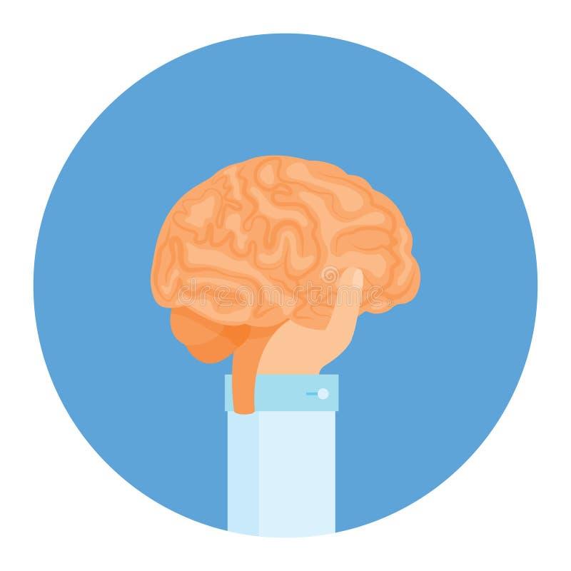 Er hält Gehirne in seiner Hand, er unterrichtet einen dummen Verstand Vektor vektor abbildung