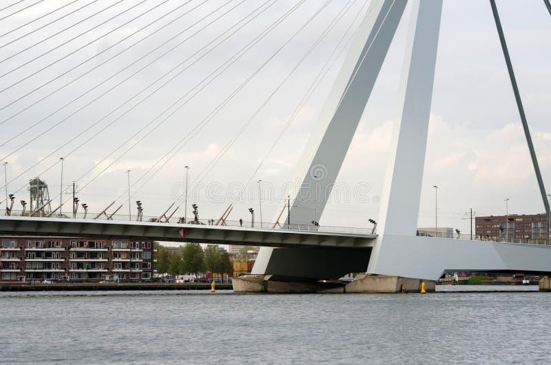 Download Erasmus Bridge immagine stock. Immagine di erasmus, famoso - 56884085