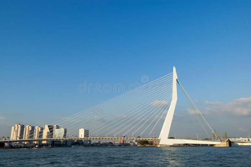 Erasmus Bridge através do Rio Mosa novo em Rotterdam imagens de stock