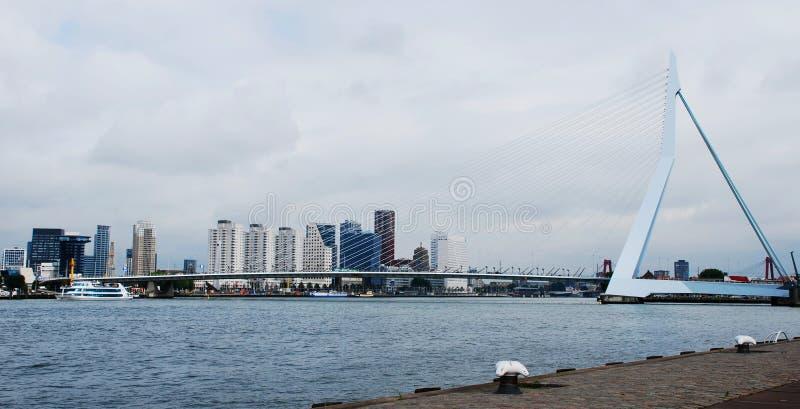 Erasmus Bridge i Rotterdam, Nederländerna royaltyfri fotografi