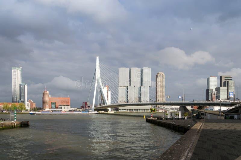 Erasmus Bridge met Wolkenkrabber in Rotterdam royalty-vrije stock afbeelding