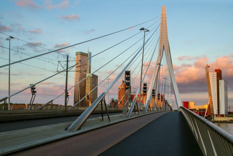 Erasmus bridge in Rotterdam, Holland, Netherlands. stock image