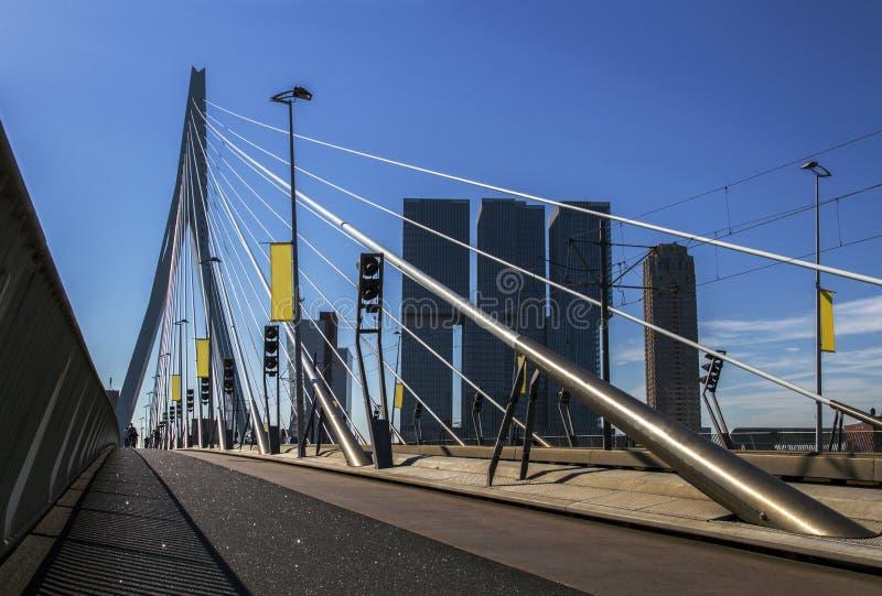 Erasmus bridge in Rotterdam, Holland, Netherlands. royalty free stock image