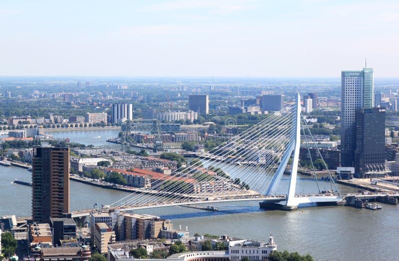 Erasmus Bridge in Rotterdam, Nederland stock afbeeldingen