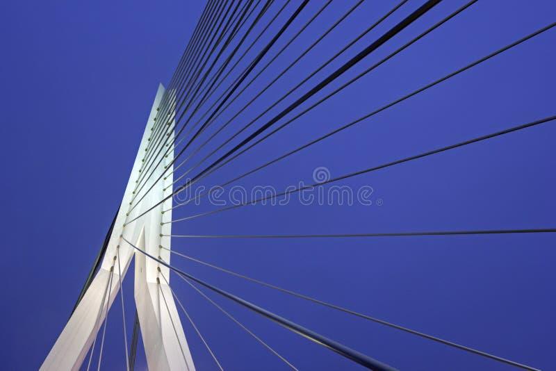 Erasmus Bridge Rotterdam, Zuid-Holland, Nederland stock fotografie