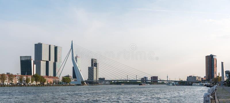 erasmus rotterdam моста стоковое изображение