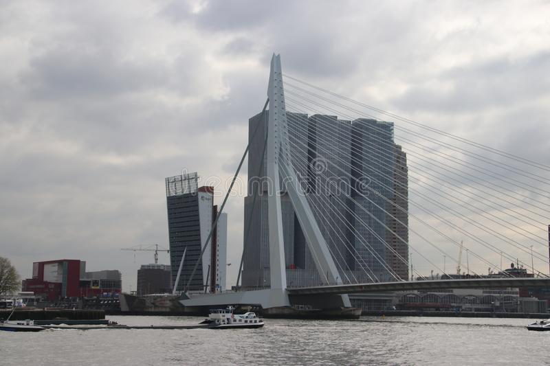 Erasmusbrug bridge over river Nieuwe Maas with nickname Swan connects north and south of Rotterdam. Erasmusbrug bridge over river Nieuwe Maas with nickname Swan royalty free stock images