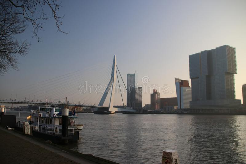 Erasmusbrug in the morning sun during sunrise at river Nieuwe Ma. As in Rotterdam, the Netherlands stock images