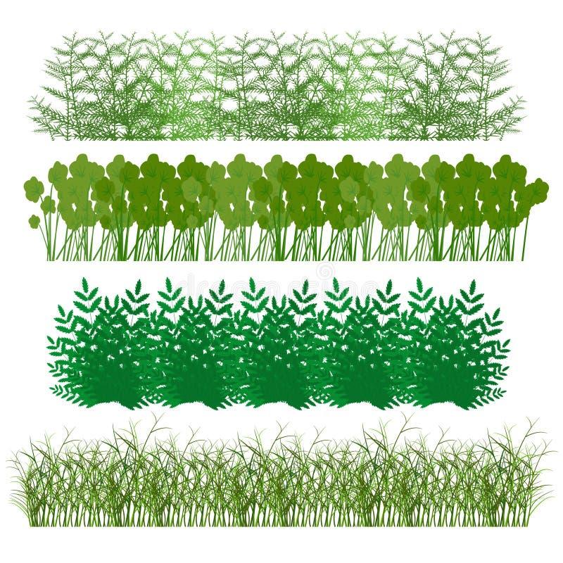 Erba, arbusti illustrazione vettoriale