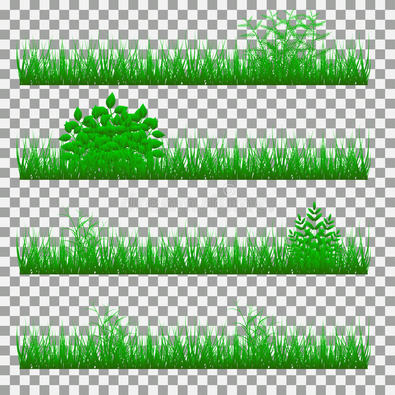 Erba arbusti un insieme di vari tipi di erbe insieme di - Diversi tipi di erba ...
