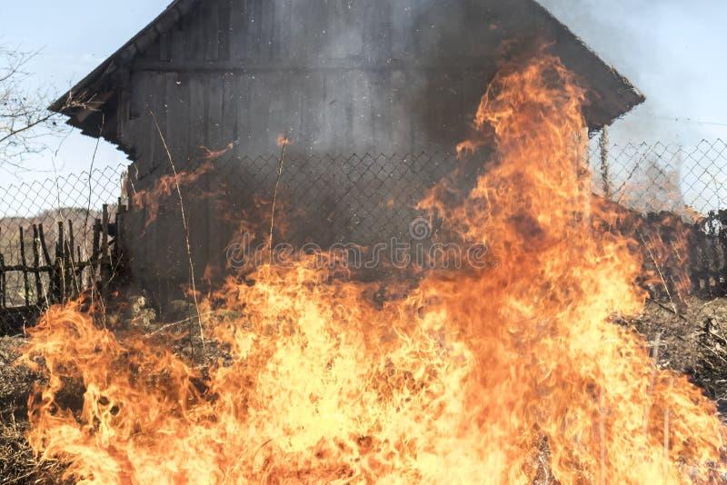 Erba Burning Fuoco all'aperto dietro la casa di legno immagine stock
