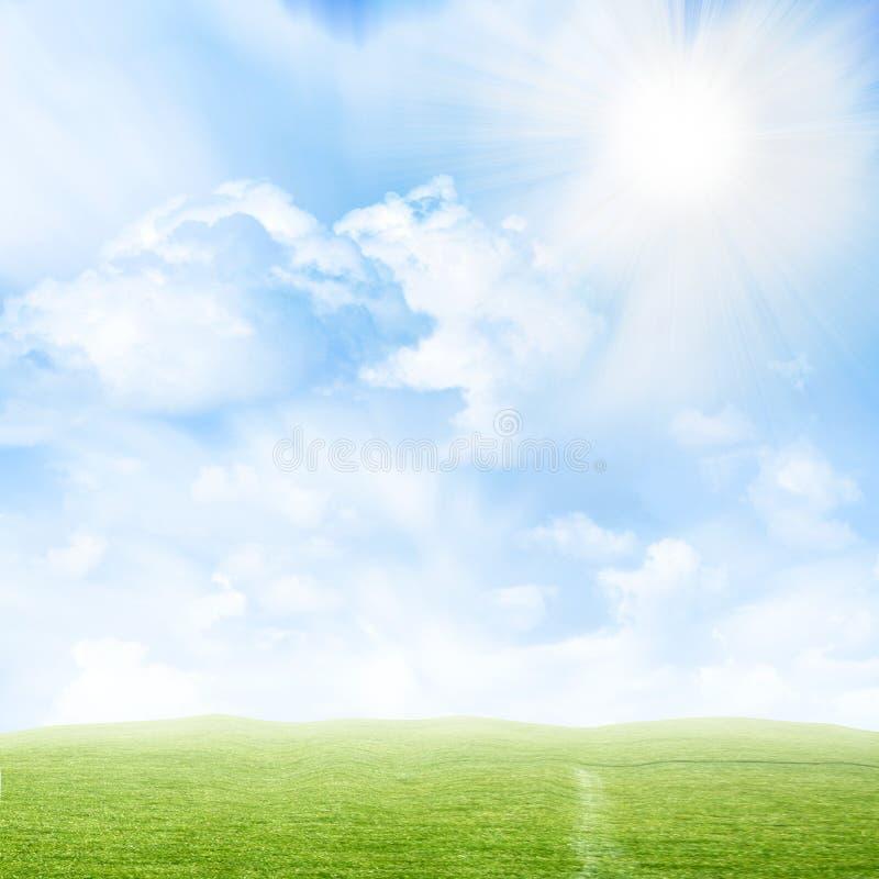 Download Erba crescente fotografia stock. Immagine di scenico, giardino - 7306370