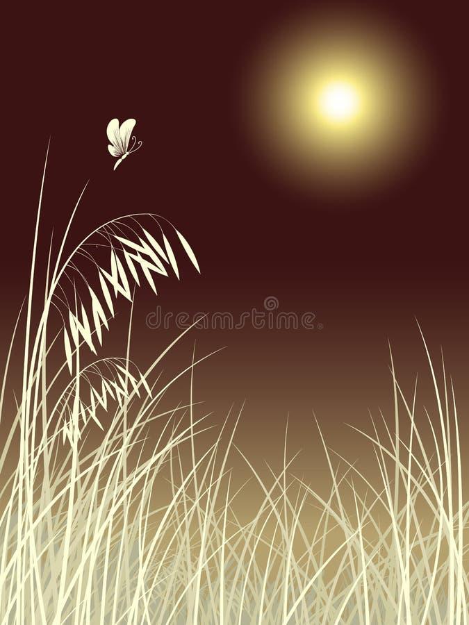 Erba della farfalla nel reticolo di notte della luna royalty illustrazione gratis