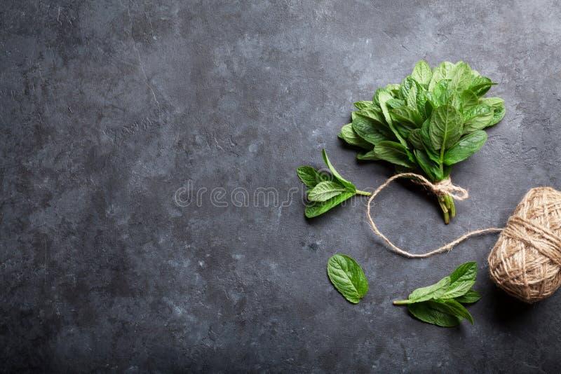 Erba delle foglie di menta fresca sulla pietra immagini stock