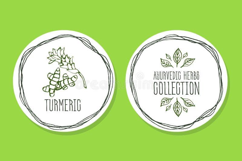 Erba di Ayurvedic - etichetta del prodotto con curcuma royalty illustrazione gratis