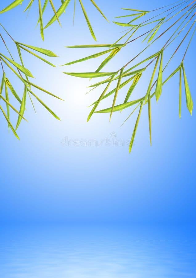 Erba di bambù del foglio sopra acqua illustrazione di stock