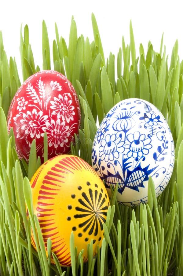 Erba di Pasqua fotografie stock libere da diritti