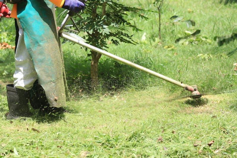Erba di taglio del lavoratore della falciatrice da giardino nel campo verde immagini stock libere da diritti