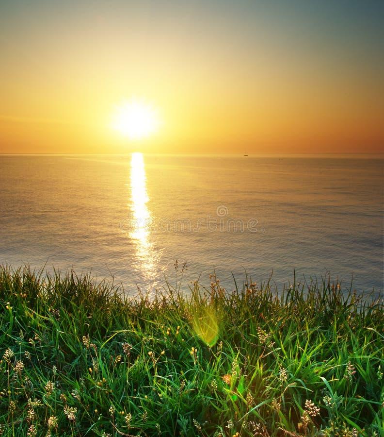 Erba e vista sul mare della sorgente fotografie stock libere da diritti