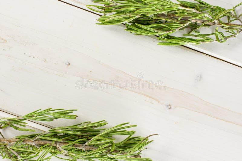 Erba fresca dei rosmarini su legno grigio fotografia stock libera da diritti