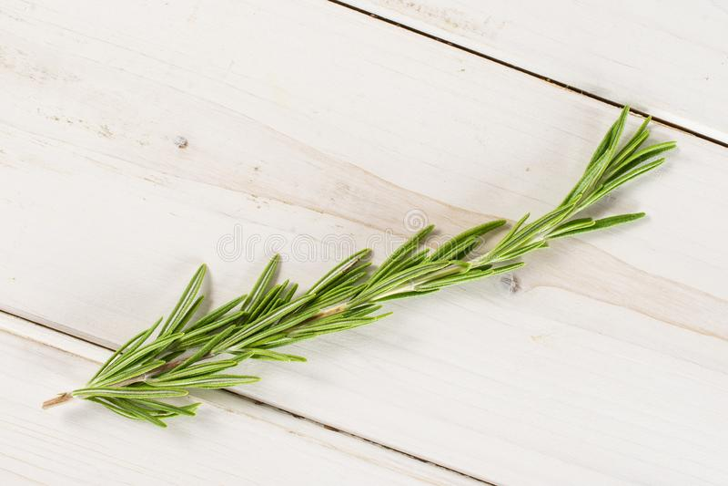 Erba fresca dei rosmarini su legno grigio fotografia stock