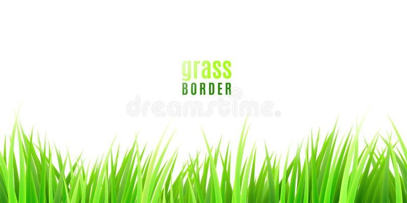Erba il confine senza cuciture con i ciuffi verdi freschi isolati su fondo bianco royalty illustrazione gratis