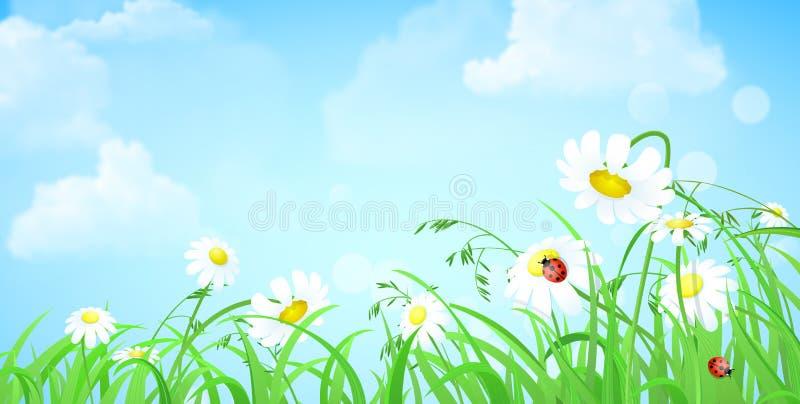 Erba il fiore, il cielo, fondo piano di vettore delle nuvole royalty illustrazione gratis