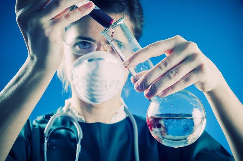 Erba medica in laboratorio immagine stock