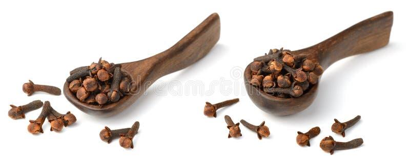 Erba secca, chiodi di garofano secchi nel cucchiaio di legno, su bianco immagine stock libera da diritti
