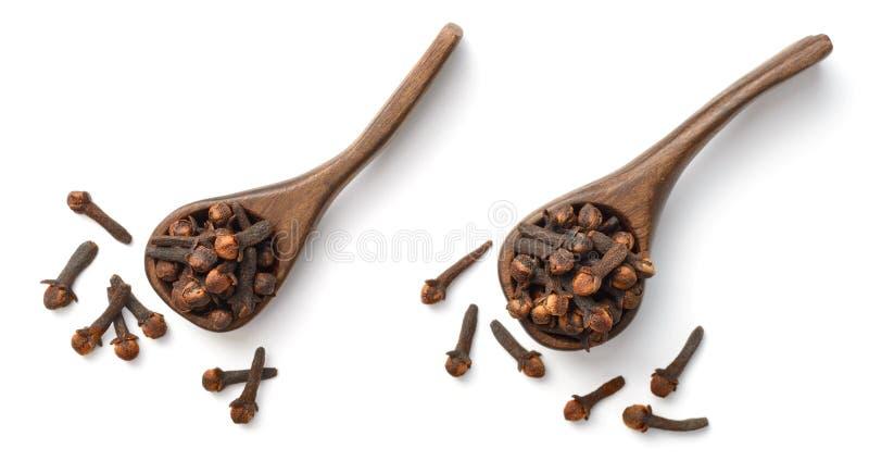 Erba secca, chiodi di garofano secchi nel cucchiaio di legno, su bianco, vista superiore fotografia stock libera da diritti
