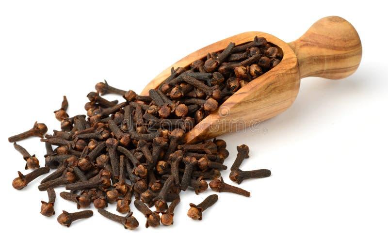 Erba secca, chiodi di garofano secchi nel mestolo di legno, isolato su bianco fotografia stock libera da diritti