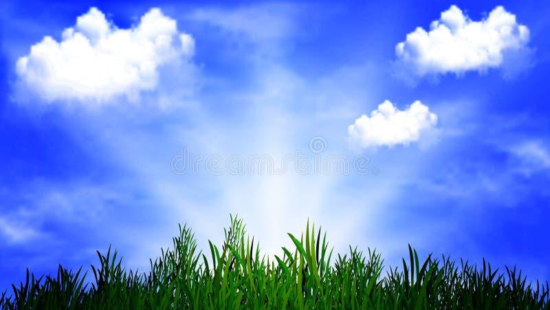 Erba su un fondo del cielo soleggiato illustrazione di stock