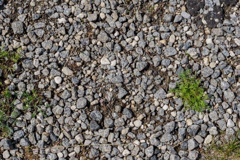 Erba sul bacground del pavimento della pietra di zen immagini stock