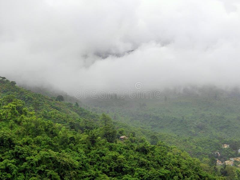 Erba verde con nuvolosità eccezionale immagine stock libera da diritti