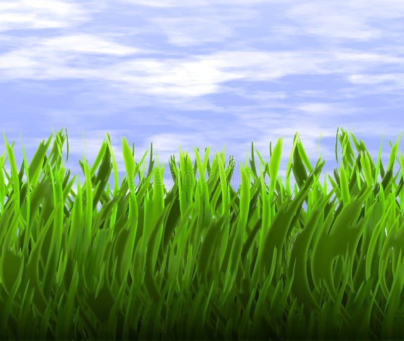 Erba verde e cielo blu   illustrazione vettoriale