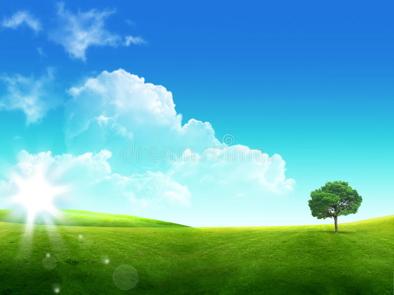 erba verde e cielo blu con le nubi e l'albero immagini stock