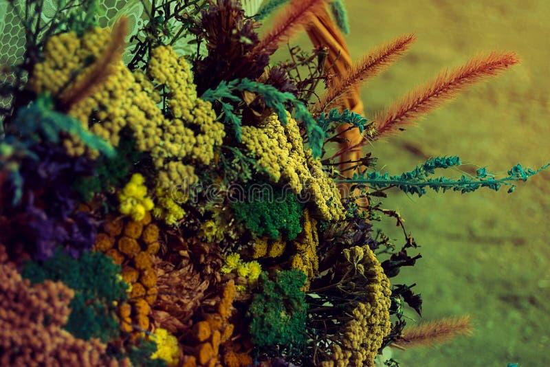 Erbario, fiori secchi, mazzo immagine stock libera da diritti