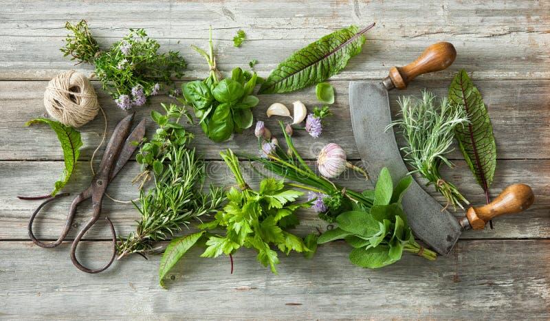 Erbe e spezie fresche sulla tavola di legno fotografie stock libere da diritti