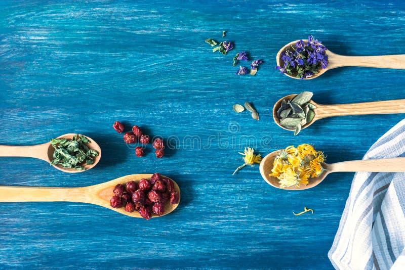 Erbe, fiori e bacche secchi per tisana vista superiore, immagini stock