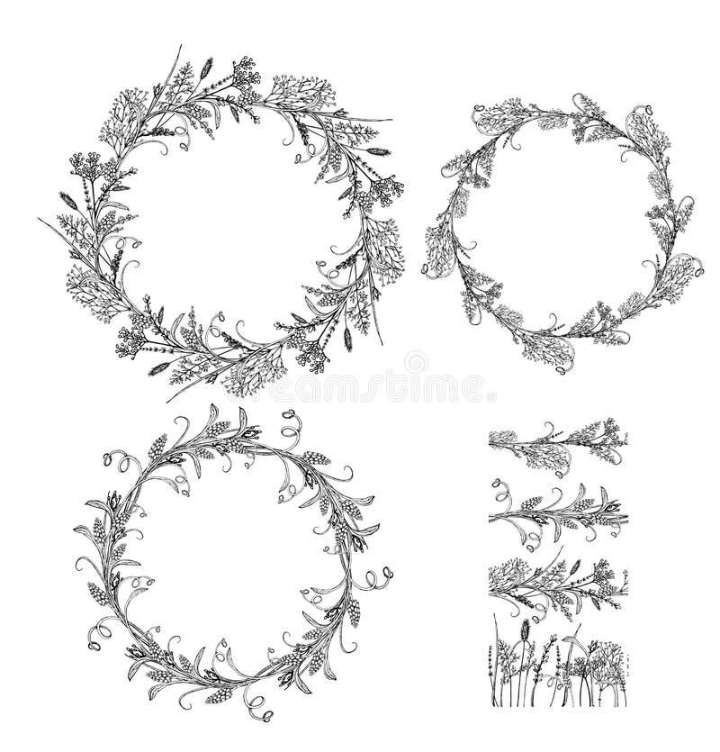 Erbe floreali del briciolo dell'illustrazione di vettore royalty illustrazione gratis