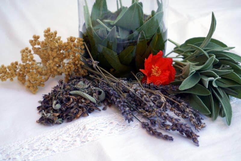 Erbe medicinali, foglie e fiori secchi di salvia, fiori della lavanda, fiore del melograno e fiore di eterno fragrante fotografia stock libera da diritti
